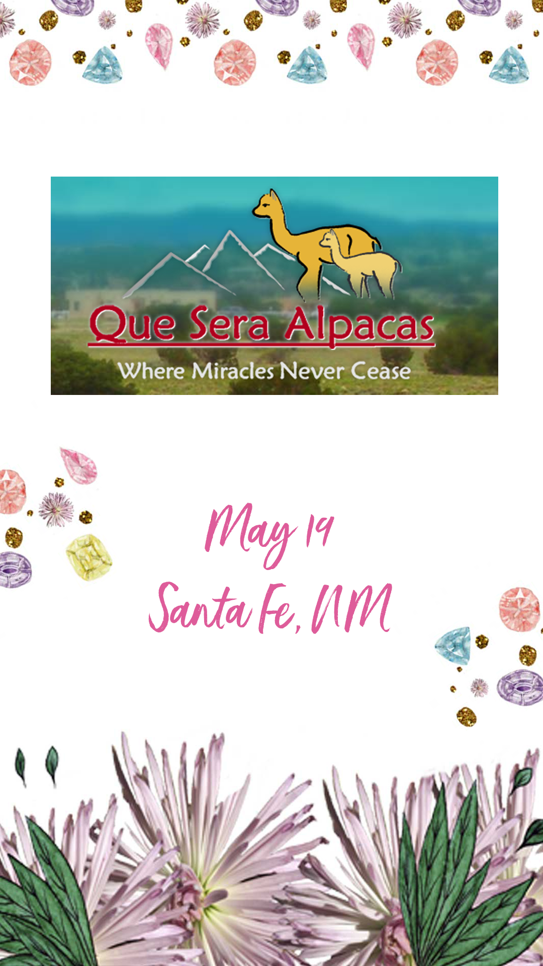 Book Signing at Que Sera Alpaca Ranch Santa Fe, NM