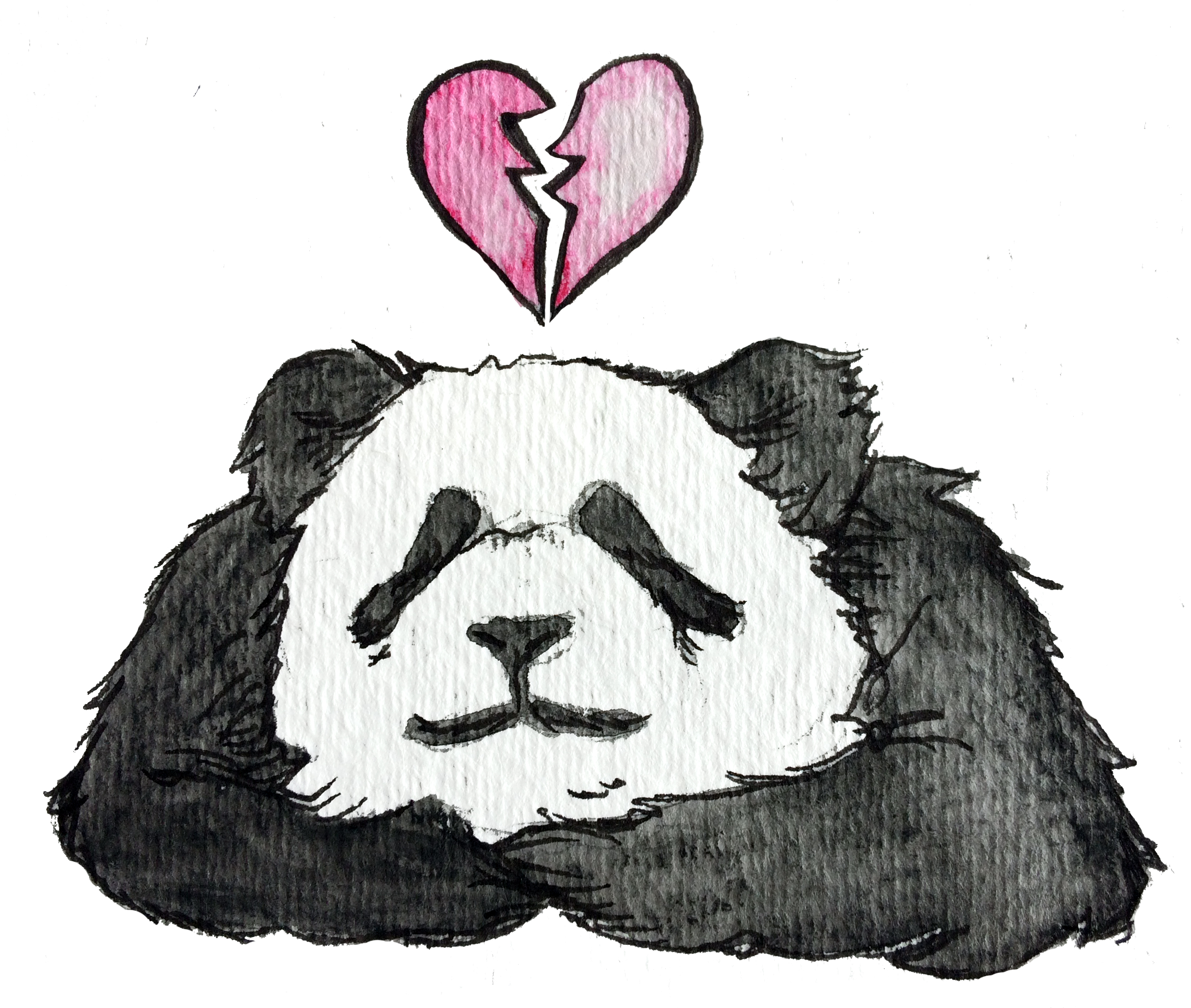 Bamboo Love | Short Story by Krista Suh | Broken-hearted Panda Illustration by Aurora Lady