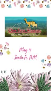 Book Signing at Que Sera Alpaca Ranch Santa Fe, NM